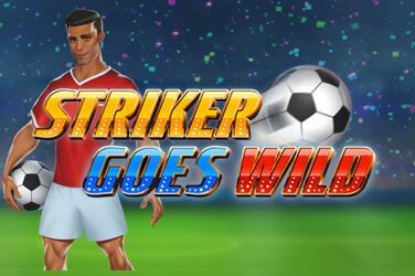 Play Striker Goes Wild Slots on HippoZino