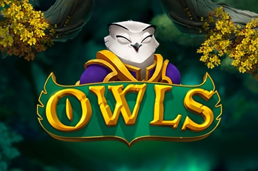 Play Owls Slots on HippoZino