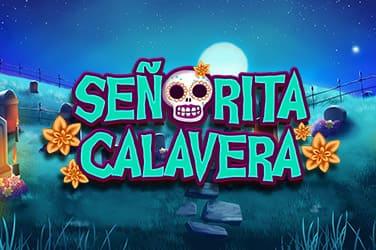 Bingo Senorita Calavera