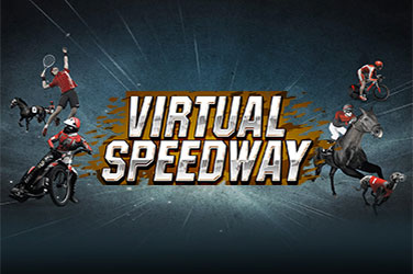 Play Virtual Speedway Casual on HippoZino