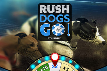 Play Rush Dogs Go! Casual on HippoZino