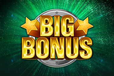 Play Big Bonus Slots on HippoZino