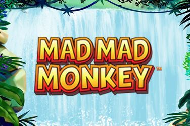Play Mad Mad Monkey Slots on HippoZino