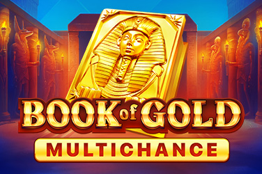 Play Book of Gold: Multichance Slots on HippoZino