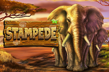 Play Stampede Slots on HippoZino