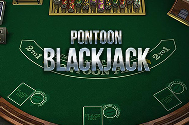 Play Pontoon 21 Casino on HippoZino