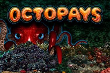 Play Octopays Slots on HippoZino