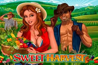 Play Sweet Harvest Slots on HippoZino