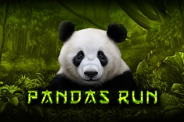 Play Pandas Run Slots on HippoZino